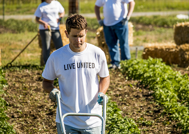 MFCU employee volunteering at a community garden in partnership with the United Way.