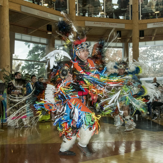 Photo of a Native American dancing in full dress at the 2018 UM Family Culture Night.